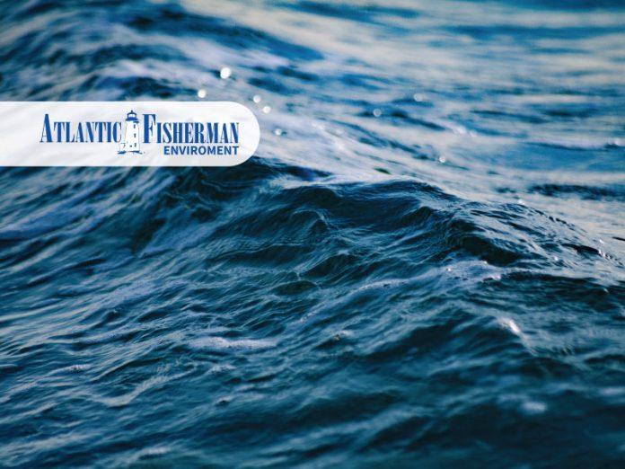 Atlantic-Fisherman-Newspaper-6