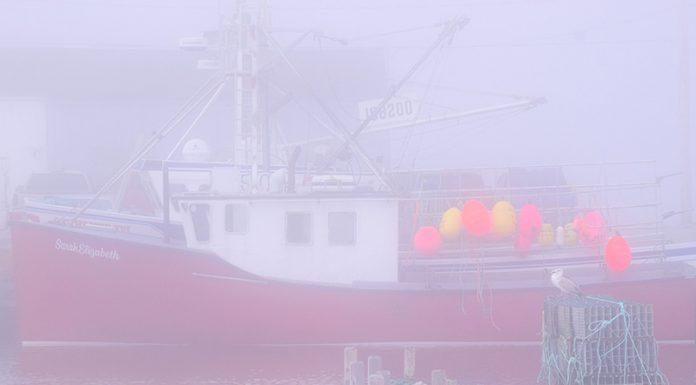 AF_SA-foggy-lobster-boat